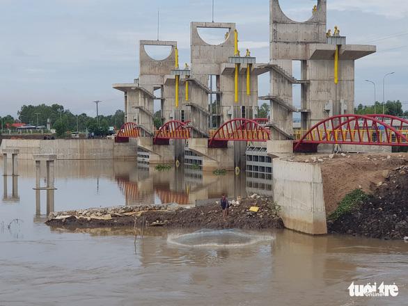 Xả lũ cống Trà Sư đưa phù sa về vùng hạ lưu đồng bằng sông Cửu Long - Ảnh 5.