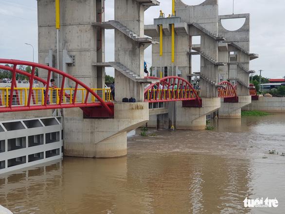 Xả lũ cống Trà Sư đưa phù sa về vùng hạ lưu đồng bằng sông Cửu Long - Ảnh 1.