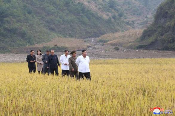 Em gái ông Kim Jong Un tái xuất hiện sau 2 tháng, thị sát vùng lũ cùng anh - Ảnh 1.