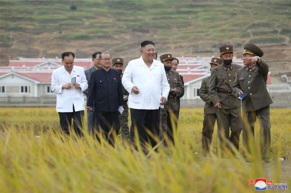 Em gái ông Kim Jong Un tái xuất hiện sau 2 tháng, thị sát vùng lũ cùng anh - Ảnh 2.