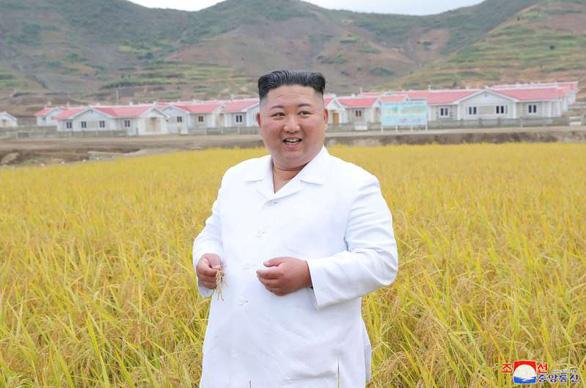 Em gái ông Kim Jong Un tái xuất hiện sau 2 tháng, thị sát vùng lũ cùng anh - Ảnh 3.