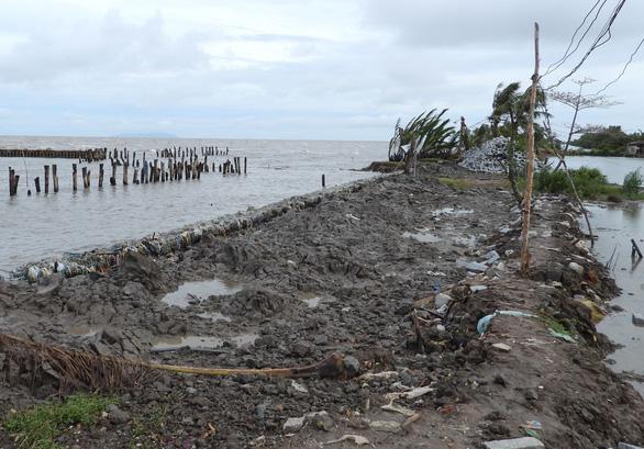 Cà Mau ban bố tình huống khẩn cấp tại 5 đoạn sạt lở đê biển Tây - Ảnh 1.
