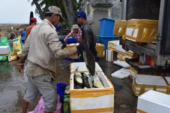 Lo bão lũ, người dân chịu lỗ bán tháo cá nuôi lồng bè - Ảnh 1.