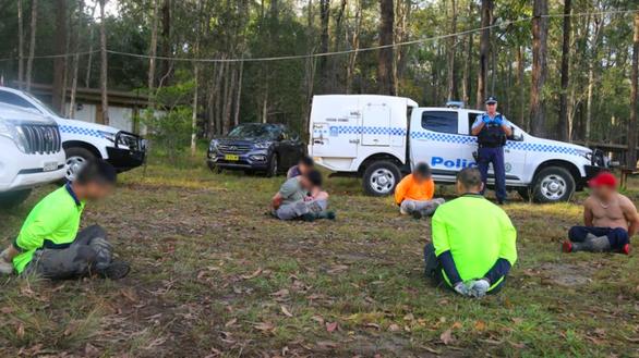 Úc bắt 14 người Việt, tịch thu hơn 13.000 cây cần sa - Ảnh 1.