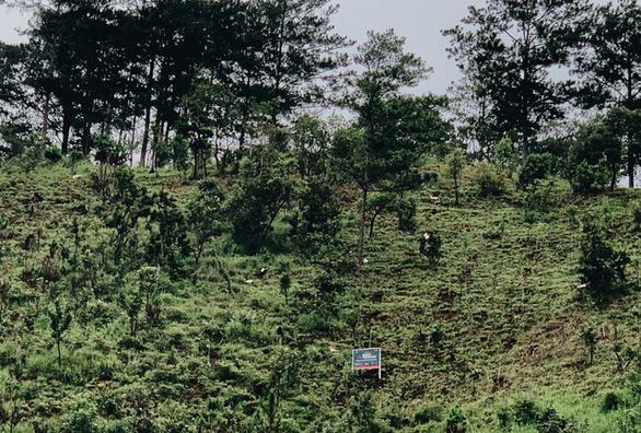 Hà Anh Tuấn trồng 1.800 cây rừng để giúp chống lũ trong dự án Rừng Việt Nam - Ảnh 2.