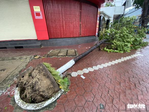 Bão vô Quảng Ngãi: Cổng chào bằng thép, cây xanh ngã đổ - Ảnh 11.