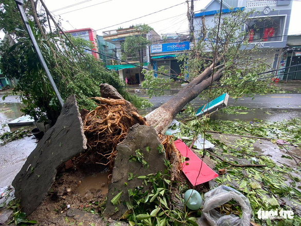 Bão vô Quảng Ngãi: Cổng chào bằng thép, cây xanh ngã đổ - Ảnh 3.