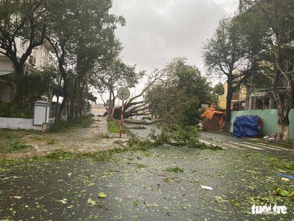 Chùm ảnh bão số 9 và hoàn lưu bão quần thảo ở Đà Nẵng - Ảnh 8.