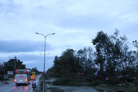 Sau bão, quốc lộ 1 qua Quảng Nam ngổn ngang cây cối - Ảnh 4.