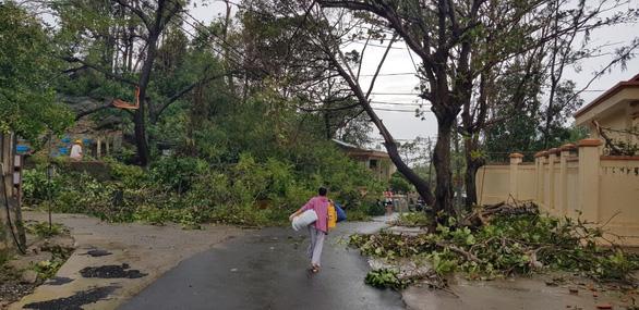 Đảo Cù Lao Chàm như bị xé vụn sau bão số 9 - Ảnh 7.