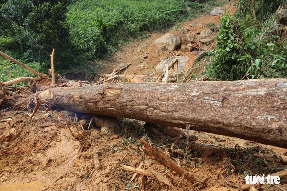 Đường vẫn chưa thông, xe chưa thể vào xã Trà Leng ứng cứu - Ảnh 4.