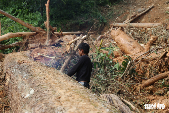 Đường vẫn chưa thông, xe chưa thể vào xã Trà Leng ứng cứu - Ảnh 5.
