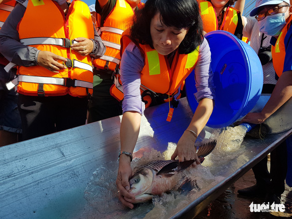 An Giang thả trên 18 tấn cá về sông để tái tạo nguồn lợi thủy sản - Ảnh 1.