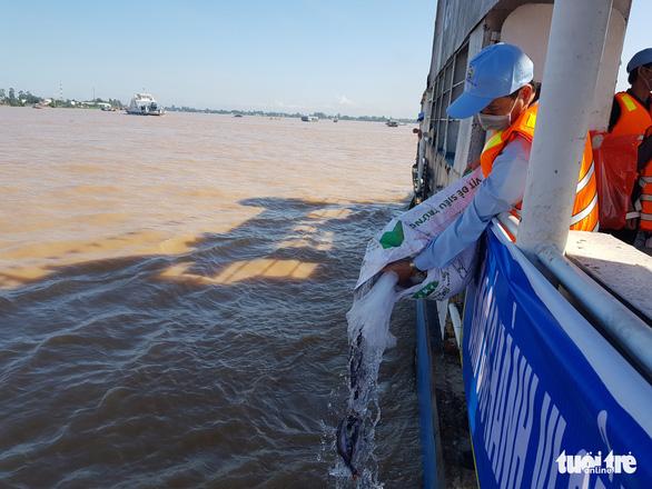 An Giang thả trên 18 tấn cá về sông để tái tạo nguồn lợi thủy sản - Ảnh 5.
