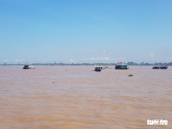 An Giang thả trên 18 tấn cá về sông để tái tạo nguồn lợi thủy sản - Ảnh 7.