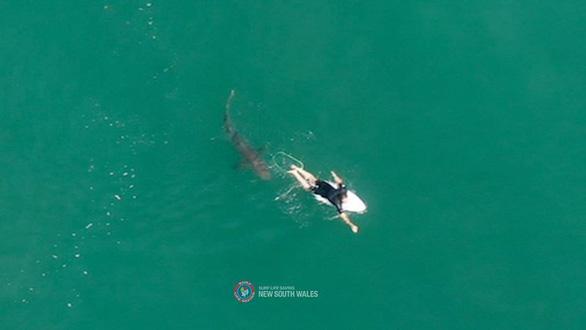 Cuộc chạm trán kịch tính với cá mập của cựu vận động viên lướt ván người Úc - Ảnh 1.