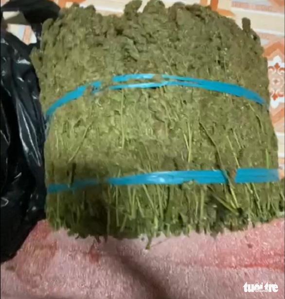 Phát hiện vụ vận chuyển gần 12kg thảo mộc nghi là cần sa - Ảnh 2.