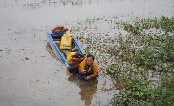 Xóm Việt kiều Campuchia đói cá - Ảnh 1.