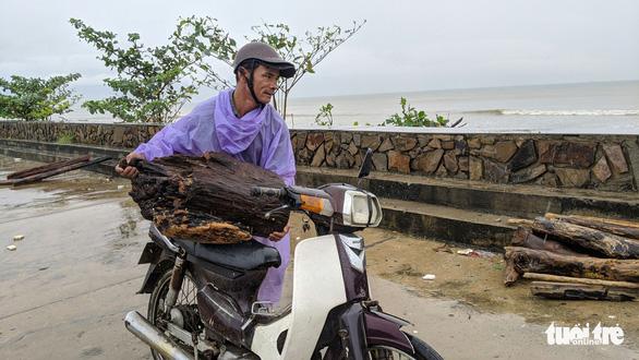 Củi tấp vào bờ biển Đà Nẵng sau bão, người dân tranh thủ nhặt - Ảnh 1.