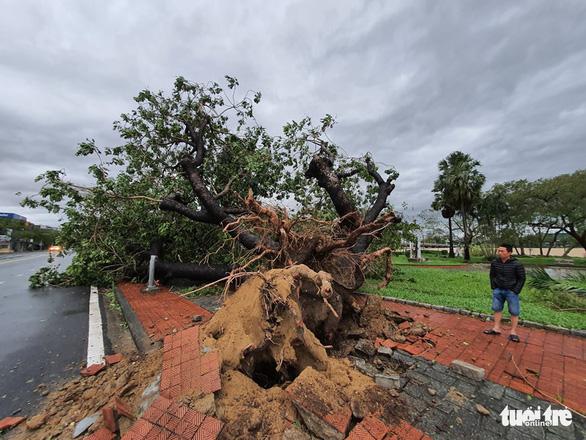 Gió bão tốc mái hàng loạt trường học, nhà dân ở Huế - Ảnh 10.