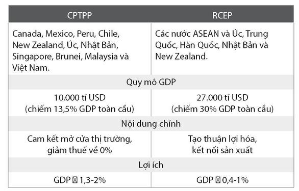 Bộ trưởng Bộ Công thương nói gì về siêu hiệp định RCEP? - Ảnh 3.