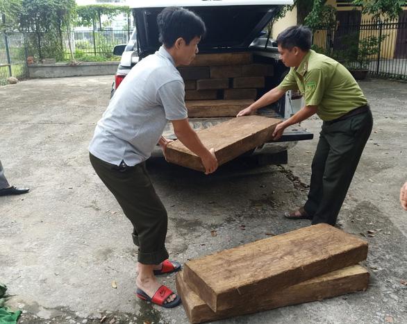 Xe chở gỗ lậu lọt qua 3 trạm kiểm lâm, gặp cảnh sát giao thông mới bị bắt - Ảnh 1.