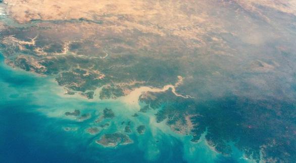 NASA nhờ AI lập bản đồ cây, phát hiện hàng tỉ cây xanh ở hoang mạc - Ảnh 1.