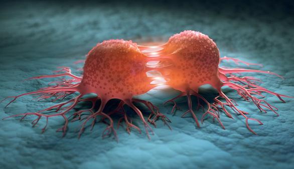 Các nhà khoa học tuyên bố tìm ra cách mới chữa khỏi ung thư và không tác dụng phụ - Ảnh 2.