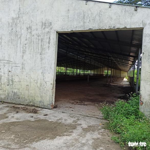 Điều chỉnh dự án nuôi bò 2.600 tỉ sang… nuôi heo với tổng vốn khoảng 250 tỉ đồng - Ảnh 3.