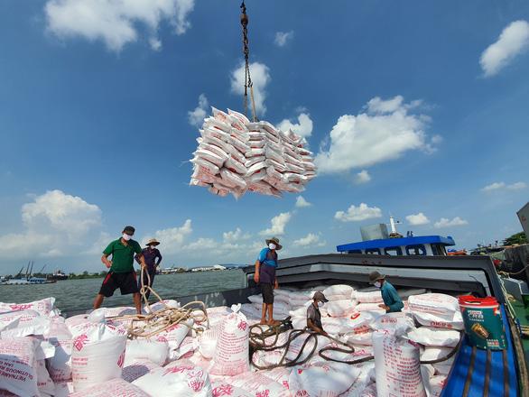 Giá gạo Việt xuất khẩu cao nhất trong 9 năm - Ảnh 1.