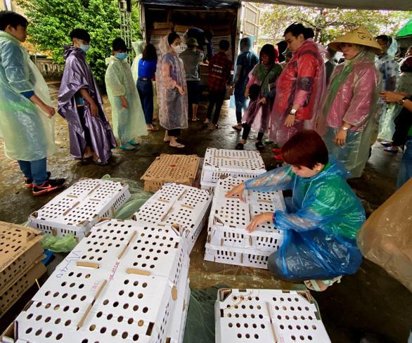 Vượt ngàn cây số mang gà, vịt, lợn giống về tặng dân vùng lũ - Ảnh 2.