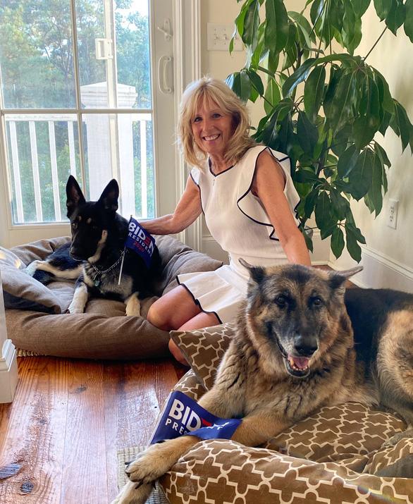 Ông Biden bị trẹo chân vì chơi với chó cưng Major - Ảnh 2.