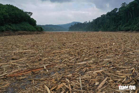 Giao công ty thủy điện gom dòng sông gỗ rộng 100m, dài 500m trong lòng hồ Đăk Mi 4 - Ảnh 1.
