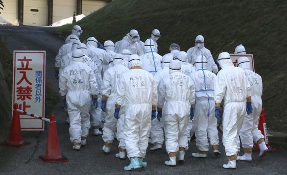 Nhật tiêu hủy 330.000 con gà sau khi phát hiện ổ dịch cúm gia cầm - Ảnh 1.