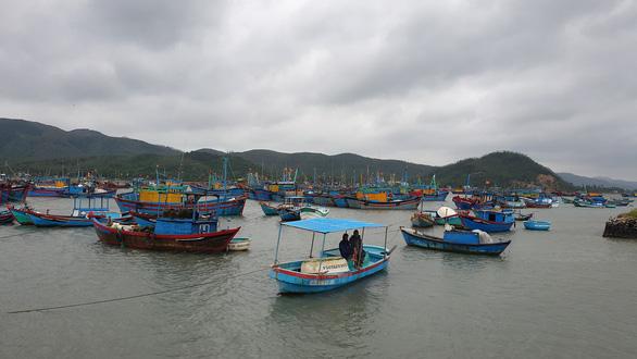 Phú Yên, Khánh Hòa sơ tán hàng ngàn dân tránh bão số 12 - Ảnh 2.