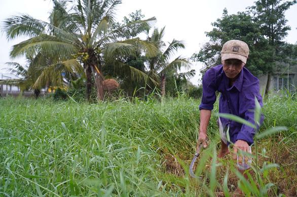 Báo Tuổi Trẻ cùng GREENFEED trao 460 triệu đồng vốn cho nông dân Bến Tre - Ảnh 1.