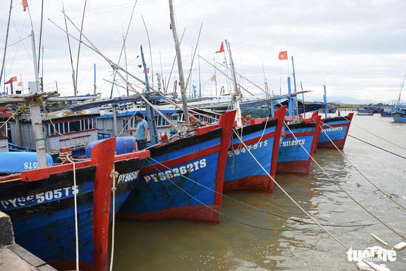 Phú Yên, Khánh Hòa cấm biển từ sáng nay, phòng bão số 12 - Ảnh 1.