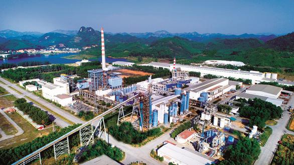 Phát triển vùng nguyên liệu, giảm gánh nặng cho ngành giấy - Ảnh 1.