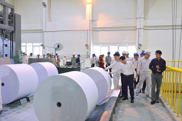 Phát triển vùng nguyên liệu, giảm gánh nặng cho ngành giấy - Ảnh 2.