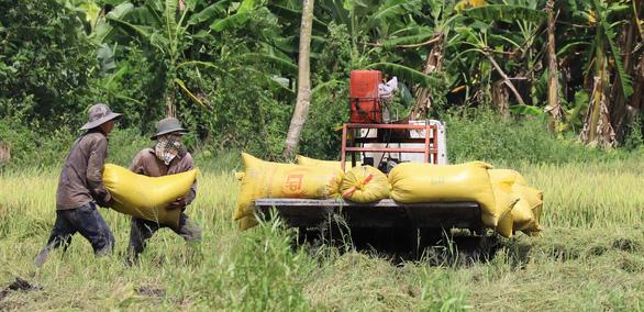 FTA Việt Nam - Anh: Doanh nghiệp Việt bớt 3.500 tỉ tiền thuế/năm - Ảnh 1.