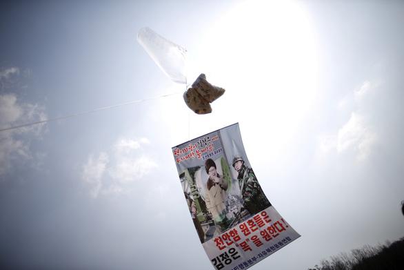 Hàn Quốc cấm gửi truyền đơn chống Triều Tiên - Ảnh 1.