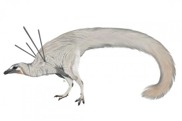 Phát hiện khủng long có tóc và ruy băng - Ảnh 1.