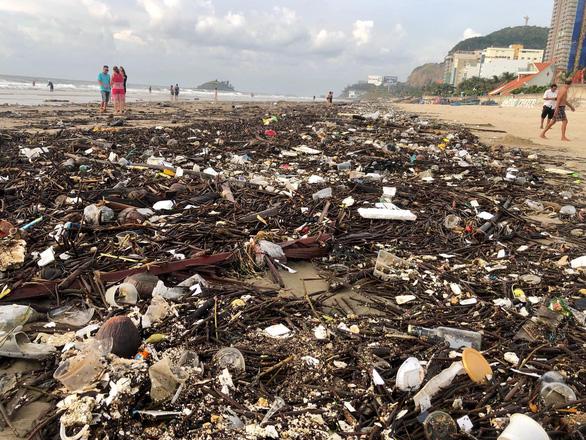 Tham tán, chuyên gia nước ngoài muốn giúp Vũng Tàu không rác thải nhựa - Ảnh 2.
