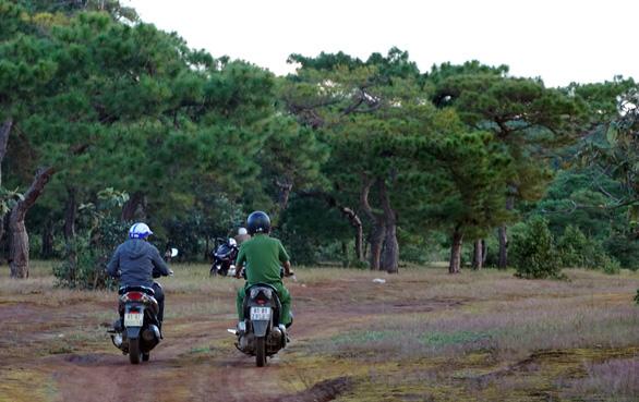 Thủ tướng yêu cầu đánh giá tác động chuyển rừng thông Đak Đoa thành sân golf - Ảnh 1.