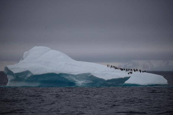 Nam Cực trở thành châu lục cuối cùng bị COVID-19 tấn công - Ảnh 1.