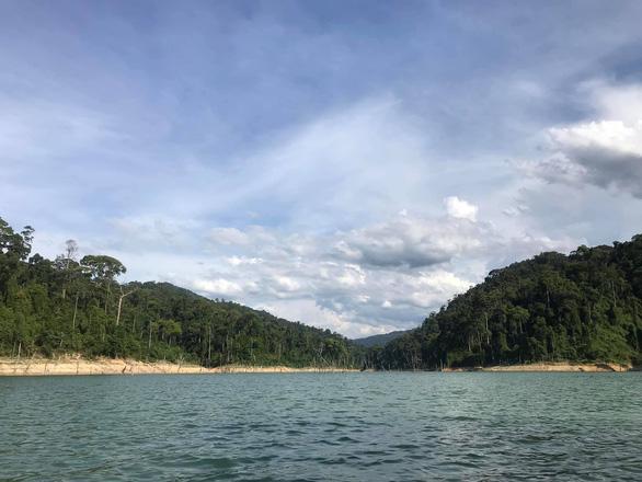 Quảng Nam sẽ đánh sập các hầm vàng ở Vườn quốc gia Sông Thanh - Ảnh 1.