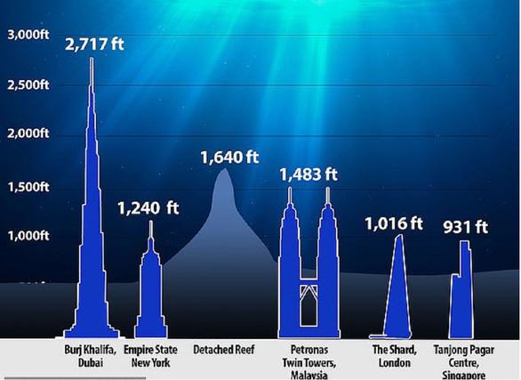Nhìn lại 2020: 10 khám phá khoa học tuyệt vời bị COVID che mờ - Ảnh 10.
