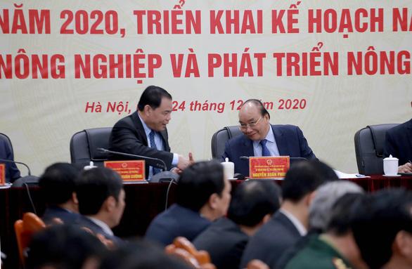 Thủ tướng Nguyễn Xuân Phúc: Tết này làm sao để giá thịt heo không cao? - Ảnh 1.