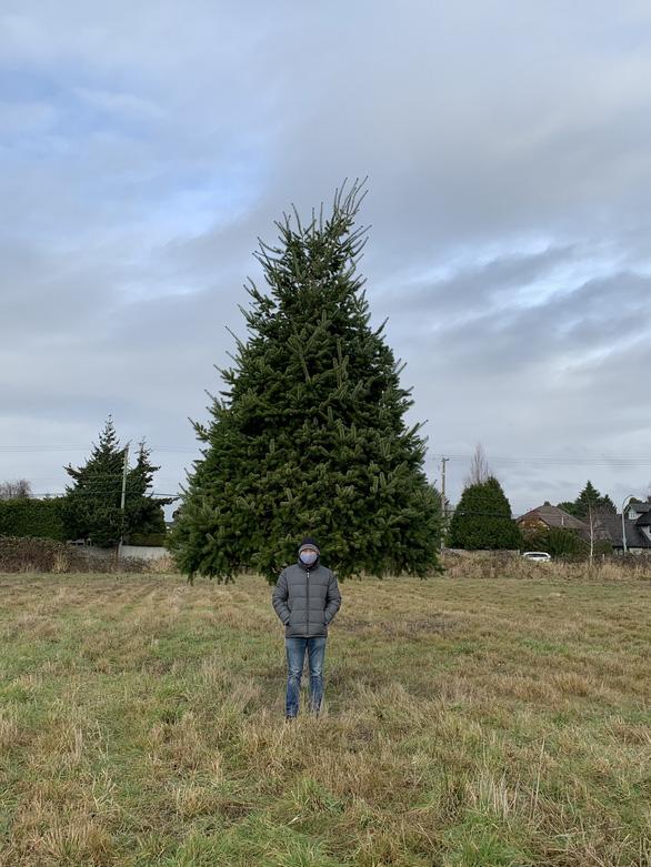 Giáng sinh ở xứ người giữa COVID-19 - Ảnh 2.