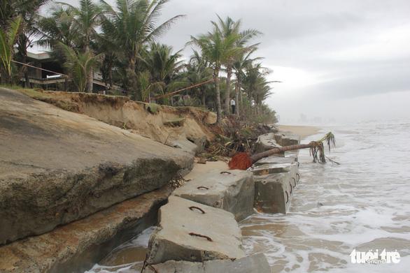 Bờ biển du lịch Đà Nẵng tiếp tục sạt lở nặng - Ảnh 1.